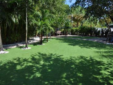 Artificial Grass Photos: Grass Carpet High Point, Florida Backyard Playground, Commercial Landscape