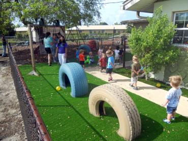 Artificial Grass Photos: Grass Carpet Meadow Woods, Florida Lawn And Landscape, Commercial Landscape