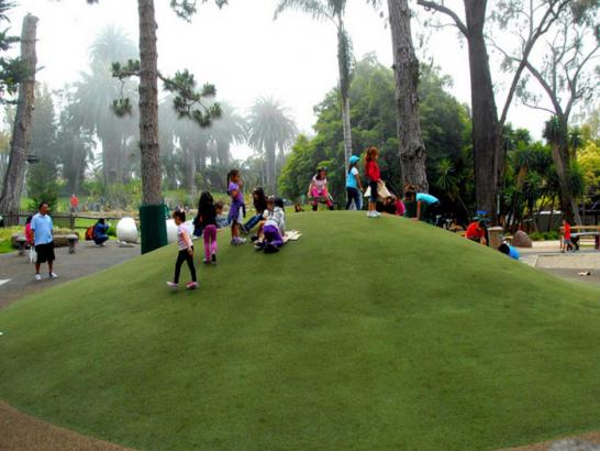 Artificial Grass Photos: Grass Carpet Memphis, Florida Athletic Playground, Recreational Areas