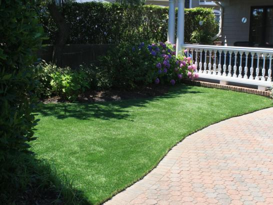 Artificial Grass Photos: Grass Carpet Wabasso Beach, Florida Grass For Dogs, Front Yard