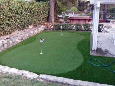 Artificial Grass Photos: Grass Installation Bonita Springs, Florida Landscape Ideas, Backyard
