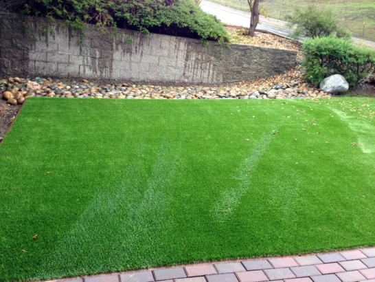 Artificial Grass Photos: Grass Installation Carrollwood Village, Florida Landscape Rock, Backyard Landscaping