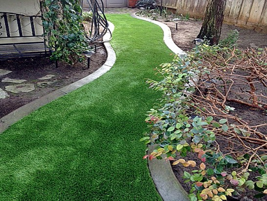 Artificial Grass Photos: Grass Installation Hernando, Florida Backyard Playground, Small Backyard Ideas