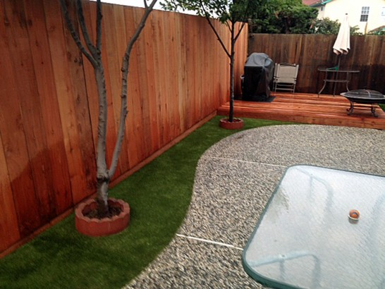Artificial Grass Photos: Grass Installation Nocatee, Florida Hotel For Dogs, Backyard Ideas