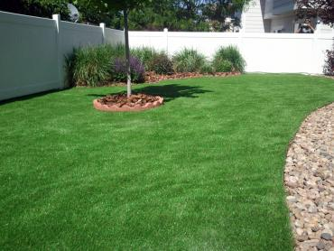 Grass Installation West and East Lealman, Florida Roof Top, Backyard Designs artificial grass