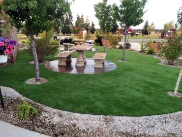 Artificial Grass Photos: Grass Turf New Port Richey, Florida Lawn And Landscape, Commercial Landscape