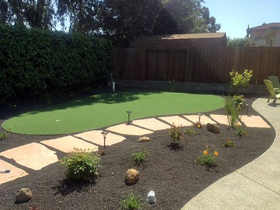 Artificial Grass Photos: Grass Turf Palm Harbor, Florida Landscaping, Backyard Landscape Ideas