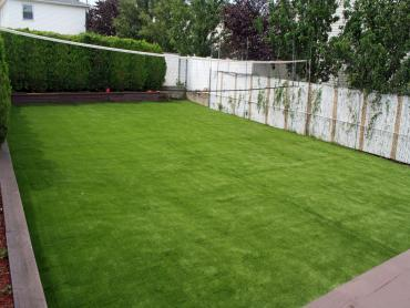 Artificial Grass Photos: Grass Turf Poinciana, Florida Rooftop, Beautiful Backyards