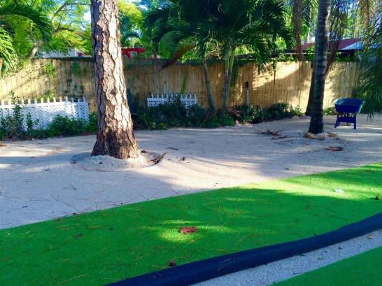 Artificial Grass Photos: Grass Turf Sorrento, Florida Rooftop, Parks
