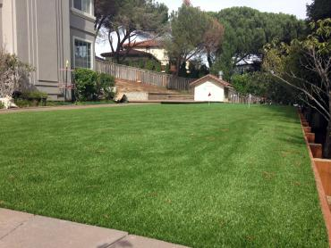Artificial Grass Photos: Green Lawn Andrews, Florida Landscape Photos, Beautiful Backyards