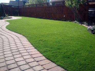 Artificial Grass Photos: Green Lawn Elfers, Florida Garden Ideas, Backyard Landscaping