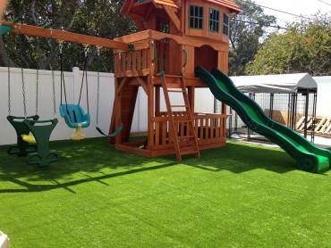 Artificial Grass Photos: Green Lawn Lecanto, Florida Home And Garden, Backyard Design
