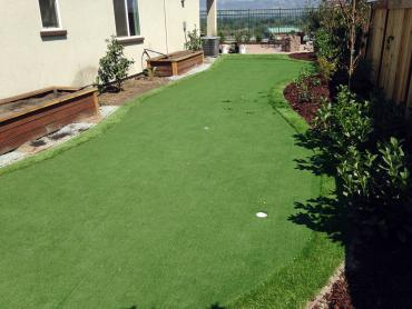 Artificial Grass Photos: Green Lawn Orlovista, Florida Lawn And Landscape, Backyard Ideas