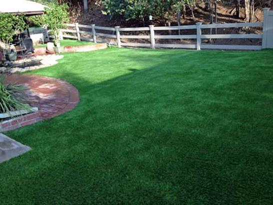Artificial Grass Photos: How To Install Artificial Grass Holmes Beach, Florida Dog Grass, Backyard Landscape Ideas