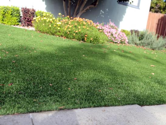Artificial Grass Photos: Installing Artificial Grass Garden Grove, Florida Landscape Photos, Front Yard Ideas