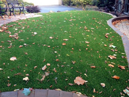 Artificial Grass Photos: Lawn Services Elfers, Florida Gardeners, Landscaping Ideas For Front Yard