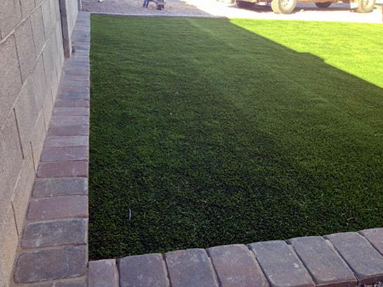 Artificial Grass Photos: Lawn Services Floral City, Florida Grass For Dogs, Front Yard Landscaping Ideas