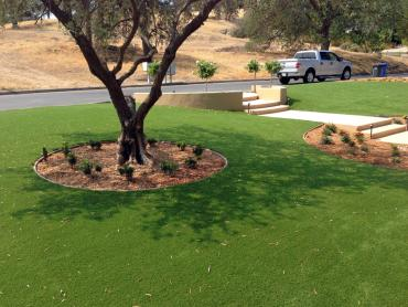 Artificial Grass Photos: Outdoor Carpet Azalea Park, Florida Lawn And Landscape, Front Yard Landscaping