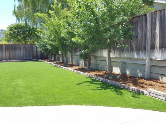 Artificial Grass Photos: Outdoor Carpet Cedar Key, Florida Backyard Playground, Backyard Landscaping