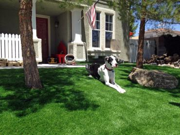 Artificial Grass Photos: Outdoor Carpet Englewood, Florida Lawns, Small Front Yard Landscaping