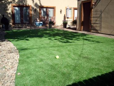 Artificial Grass Photos: Outdoor Carpet Fruitland Park, Florida Lawn And Landscape, Backyard Design