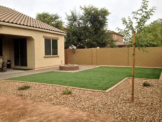 Artificial Grass Photos: Outdoor Carpet Inverness Highlands South, Florida Home And Garden, Backyard Landscaping Ideas