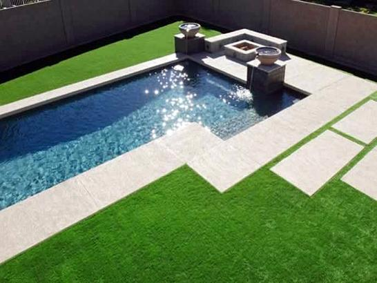 Artificial Grass Photos: Outdoor Carpet South Daytona, Florida Lawns, Backyard