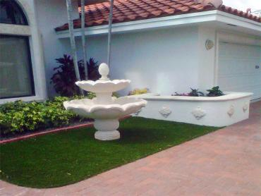 Artificial Grass Photos: Outdoor Carpet Zephyrhills, Florida Rooftop, Landscaping Ideas For Front Yard