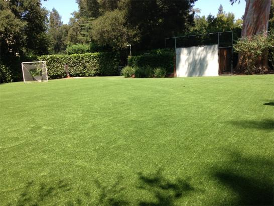Artificial Grass Photos: Plastic Grass Cross City, Florida Backyard Soccer, Beautiful Backyards