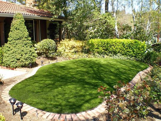 Artificial Grass Photos: Plastic Grass Cypress Gardens, Florida Garden Ideas, Backyard Makeover