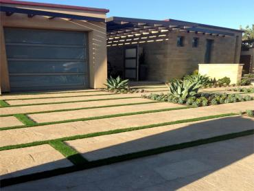 Artificial Grass Photos: Plastic Grass Fairview Shores, Florida Rooftop, Landscaping Ideas For Front Yard