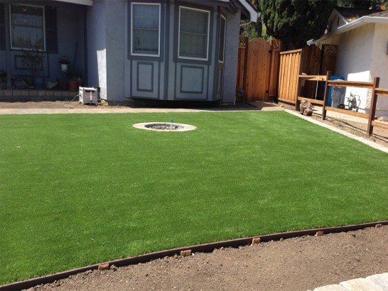 Artificial Grass Photos: Plastic Grass Southchase, Florida Lawn And Garden, Backyard Landscaping Ideas