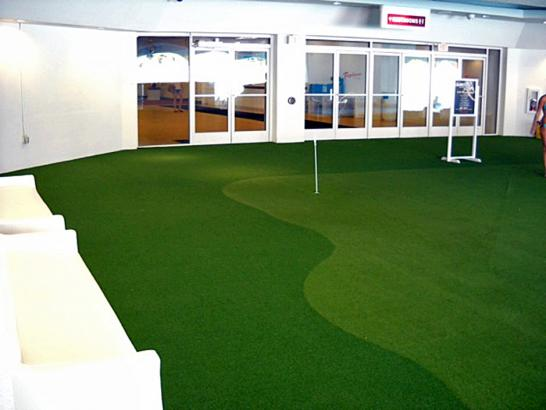 Artificial Grass Photos: Synthetic Grass Belleair Shore, Florida Putting Green Grass, Commercial Landscape