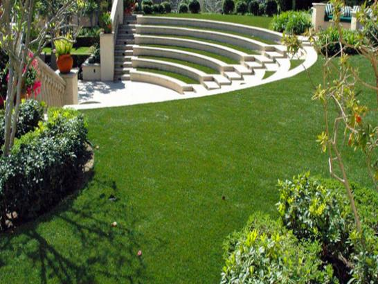 Artificial Grass Photos: Synthetic Grass Cost Crystal Springs, Florida City Landscape
