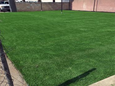 Artificial Grass Photos: Synthetic Grass Cost Eustis, Florida Soccer Fields