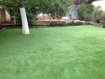 Artificial Grass Photos: Synthetic Grass Cost Page Park, Florida Gardeners, Backyards