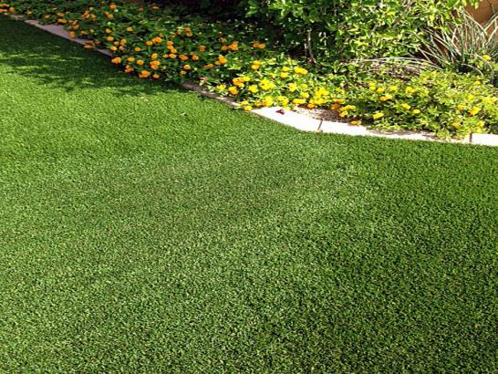 Artificial Grass Photos: Synthetic Grass Cost Saint George, Florida Backyard Deck Ideas, Front Yard Landscape Ideas