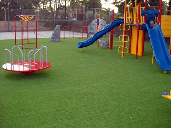 Artificial Grass Photos: Synthetic Grass Cost Vero Beach, Florida Playground Turf, Recreational Areas