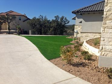 Artificial Grass Photos: Synthetic Grass Cost Wesley Chapel, Florida Landscape Ideas, Front Yard Ideas