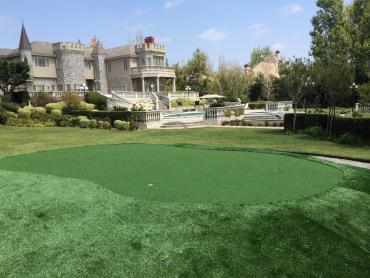 Synthetic Grass South Highpoint, Florida Rooftop, Front Yard Ideas artificial grass