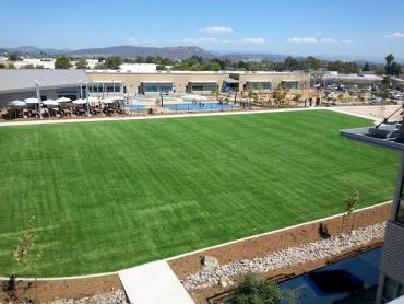 Artificial Grass Photos: Synthetic Lawn Black Diamond, Florida Backyard Sports, Commercial Landscape