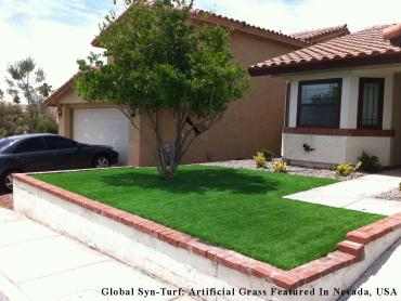 Artificial Grass Photos: Synthetic Lawn Carrollwood Village, Florida Paver Patio, Front Yard Landscaping