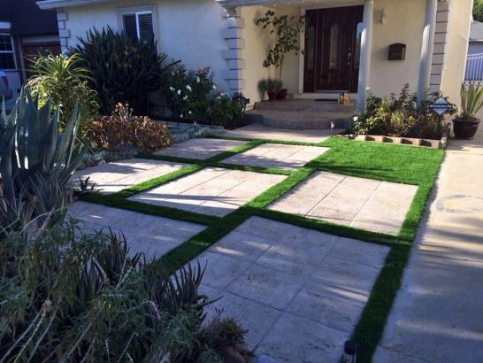 Artificial Grass Photos: Synthetic Lawn Daytona Beach Shores, Florida Lawn And Garden, Landscaping Ideas For Front Yard