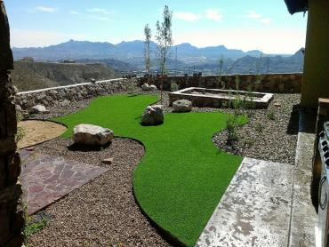 Artificial Grass Photos: Synthetic Lawn Dunnellon, Florida Backyard Deck Ideas, Backyard Landscaping