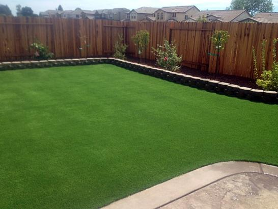 Artificial Grass Photos: Synthetic Lawn East Lake, Florida Landscape Rock, Beautiful Backyards