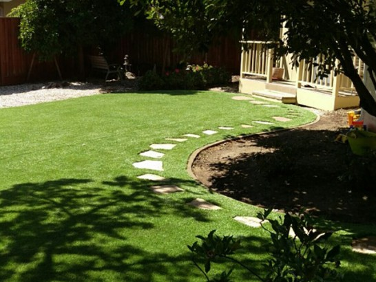 Synthetic Lawn Lake Mary, Florida Landscape Rock, Backyard artificial grass