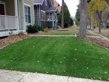 Artificial Grass Photos: Synthetic Turf Babson Park, Florida Backyard Deck Ideas, Front Yard Landscaping