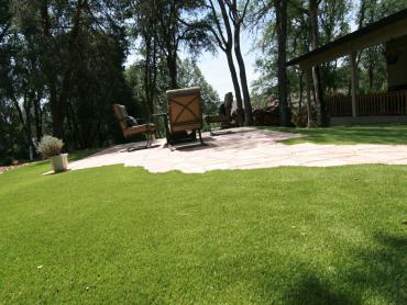 Artificial Grass Photos: Synthetic Turf Lemon Grove, Florida Design Ideas, Backyard Makeover