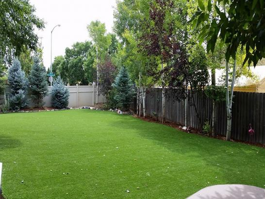 Artificial Grass Photos: Synthetic Turf Mascotte, Florida Dog Run, Backyard Makeover