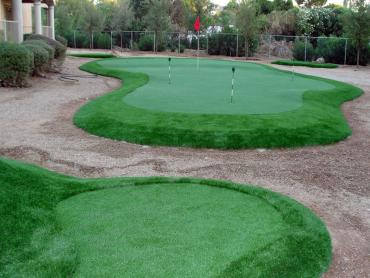 Synthetic Turf Ruskin, Florida Putting Green Carpet, Backyard Makeover artificial grass